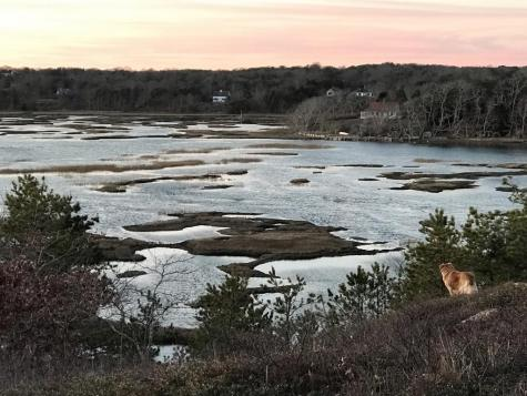 6 River View Truro MA 02666