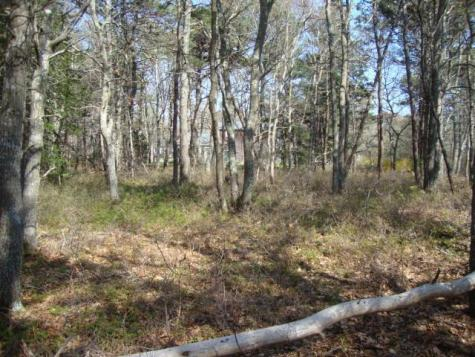 204 Straightway (North) Barnstable MA 02601