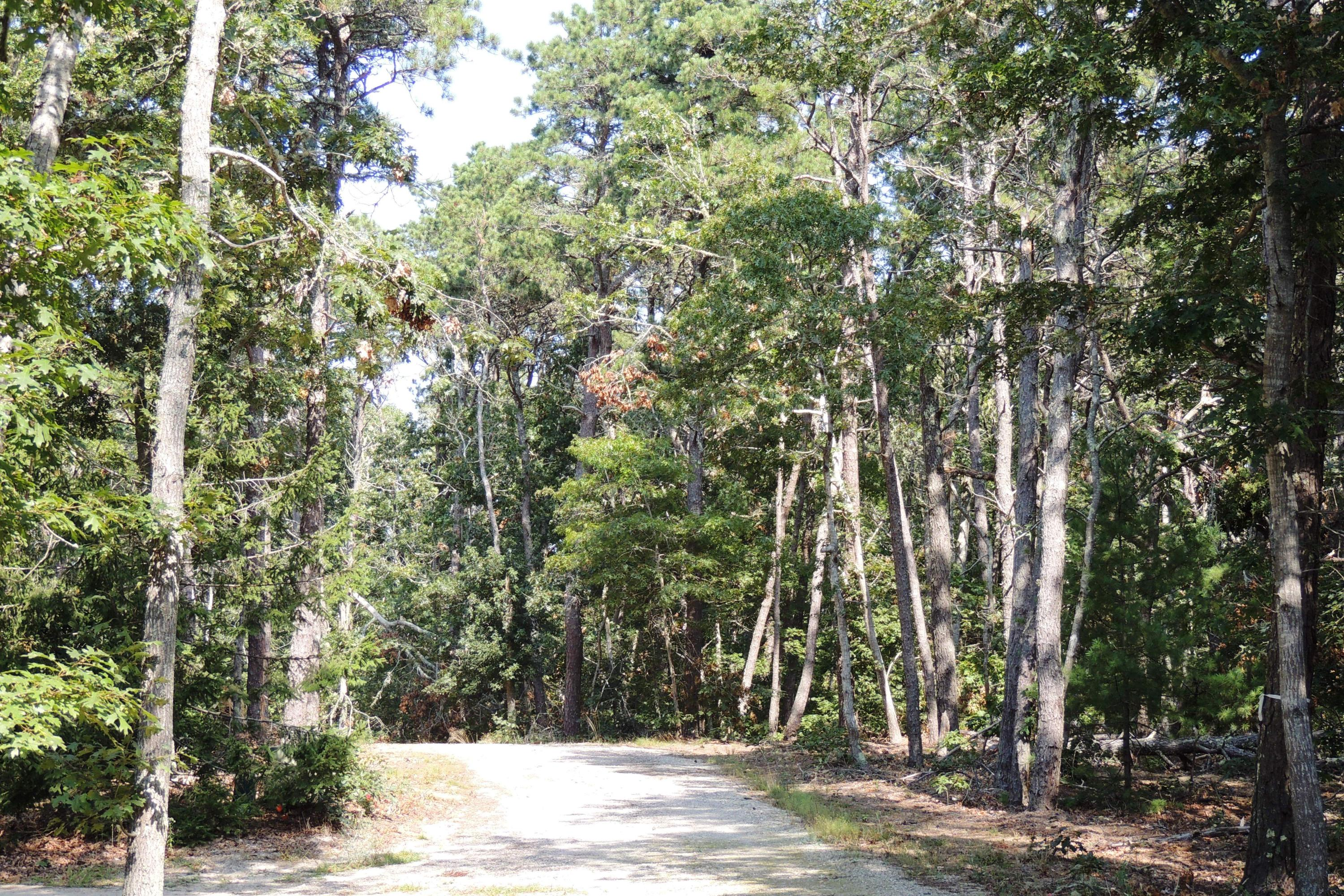 3 Old Campground Harwich MA 02646